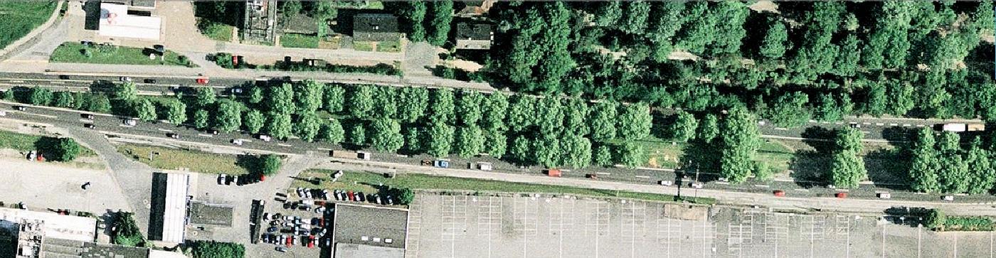 Noch 2006 erlebbar: ziemlich gute Allee östlich Schnettkerbrücke