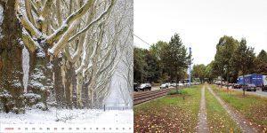 collage_lebensader
